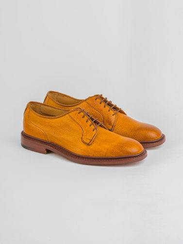 TRICKER'S DERBY ROBERT ACORN